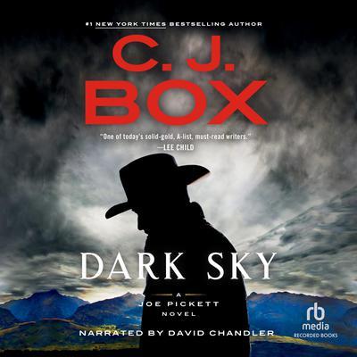 Dark Sky Audiobook, by