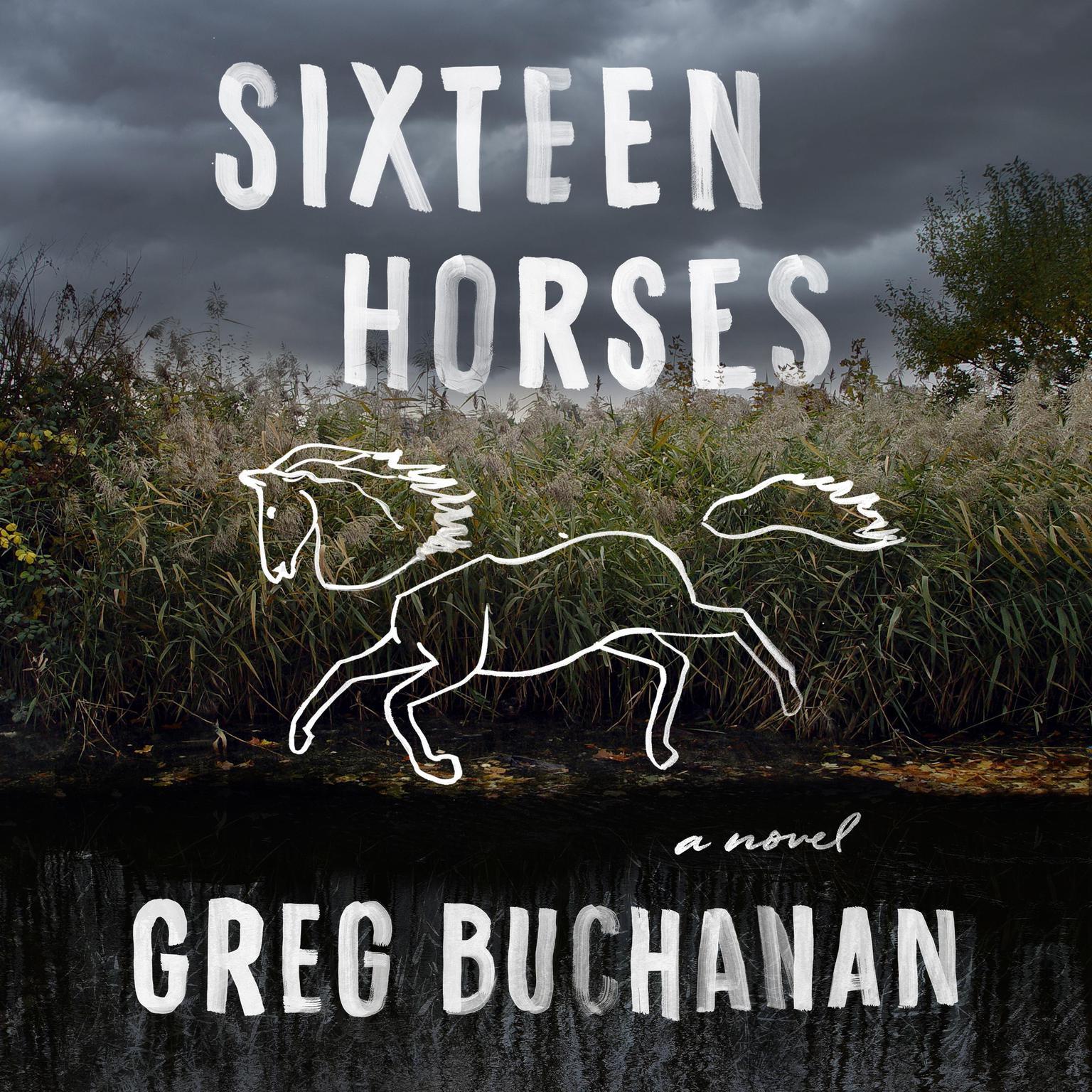 Sixteen Horses: A Novel Audiobook, by Greg Buchanan