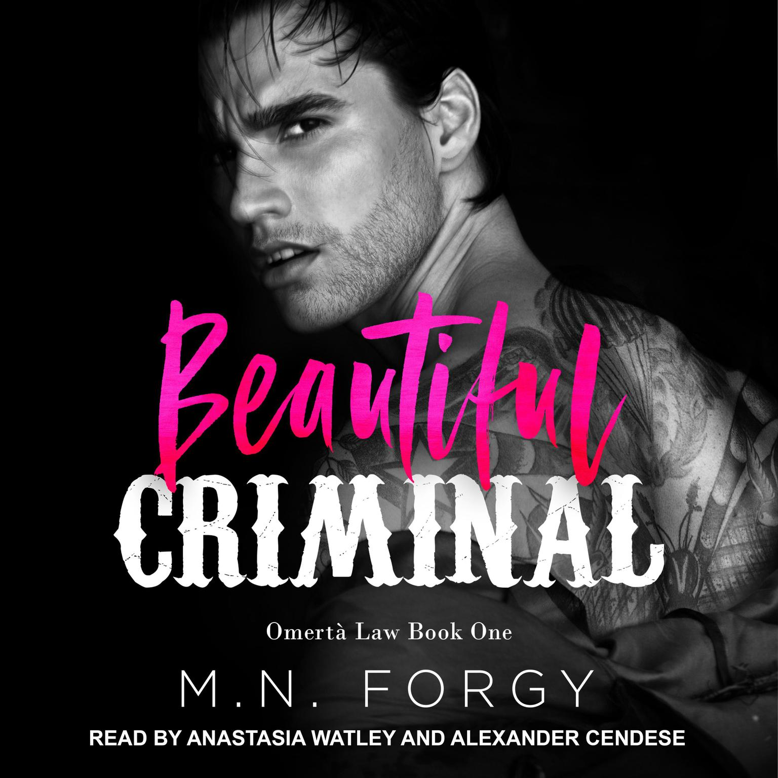 Beautiful Criminal Audiobook, by M. N. Forgy