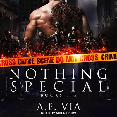 Nothing Special Series Box Set: Books 1-5 Audiobook, by A.E. Via