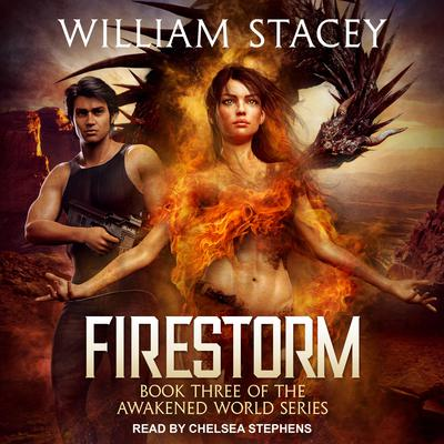 Firestorm Audiobook, by William Stacey