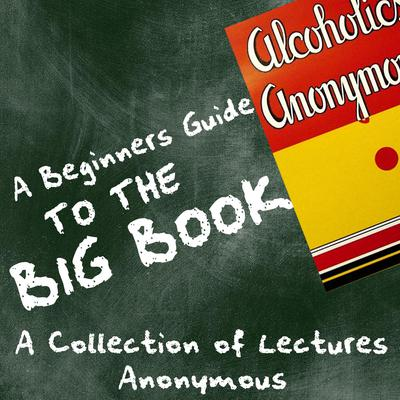 A Beginners Guide to the Big Book - A Collection of Lectures Audiobook, by Anoynymous