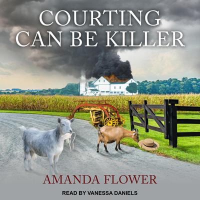 Courting Can Be Killer Audiobook, by