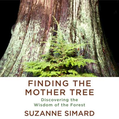 Finding the Mother Tree: Discovering the Wisdom of the Forest Audiobook, by