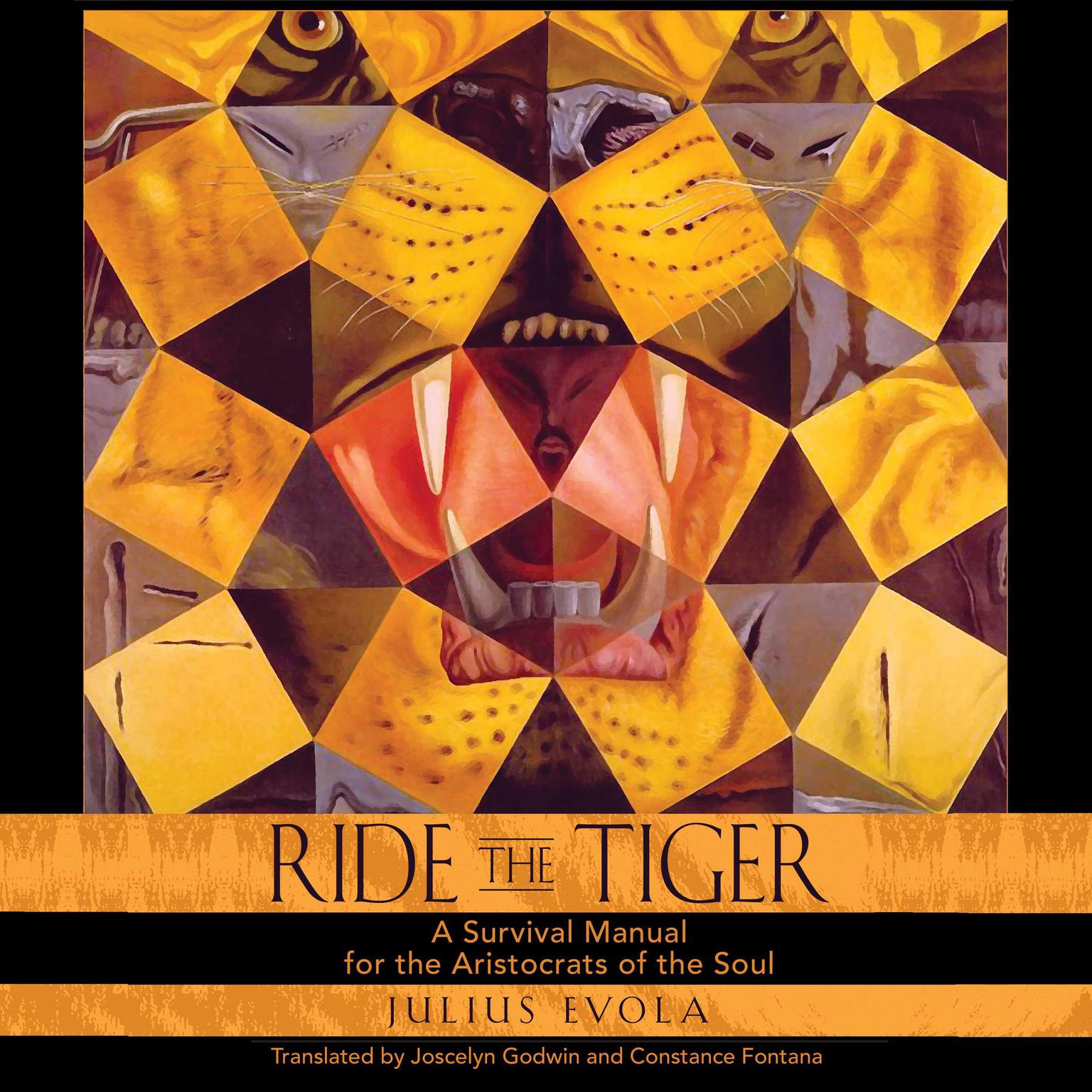 Ride the Tiger: A Survival Manual for the Aristocrats of the Soul Audiobook, by Julius Evola