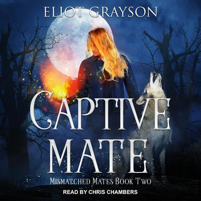 Captive Mate Audiobook, by Eliot Grayson