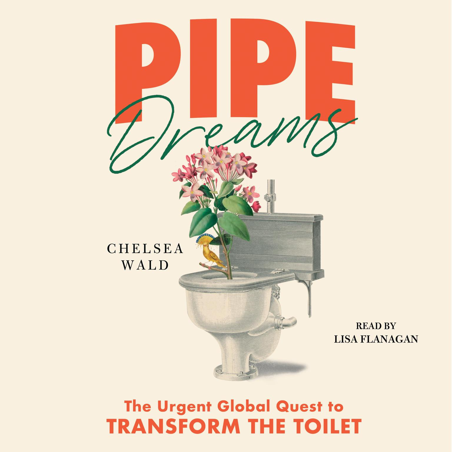 Pipe Dreams: The Urgent Global Quest to Transform the Toilet Audiobook, by Chelsea Wald