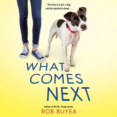 What Comes Next Audiobook, by Rob Buyea