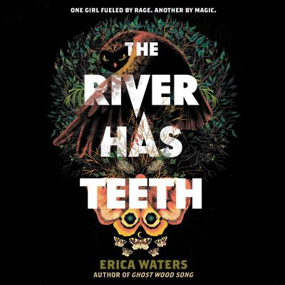 The River Has Teeth Audiobook, by Erica Waters