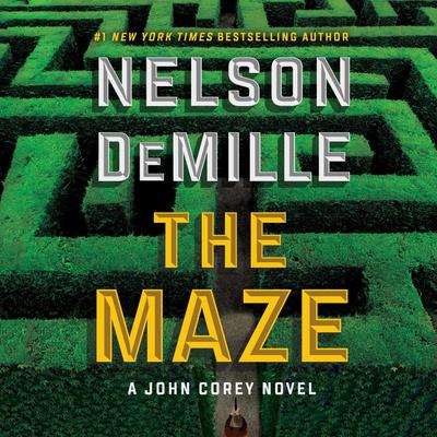 The Maze Audiobook, by