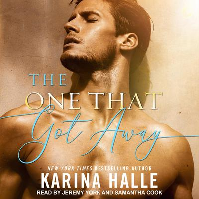 The One That Got Away Audiobook, by Karina Halle