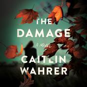 The Damage: A Novel Audiobook, by Caitlin Wahrer