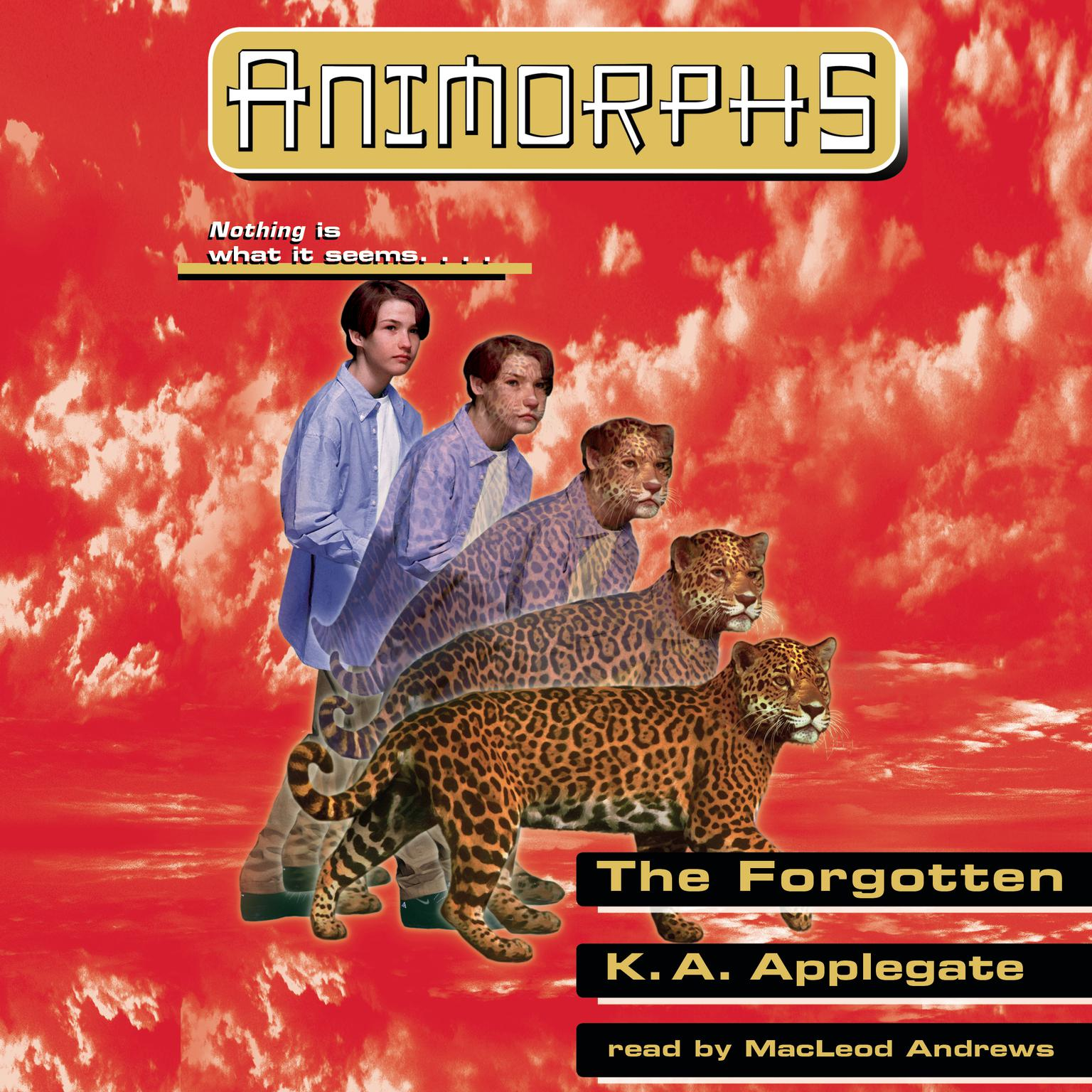 The Forgotten Audiobook, by Katherine Applegate