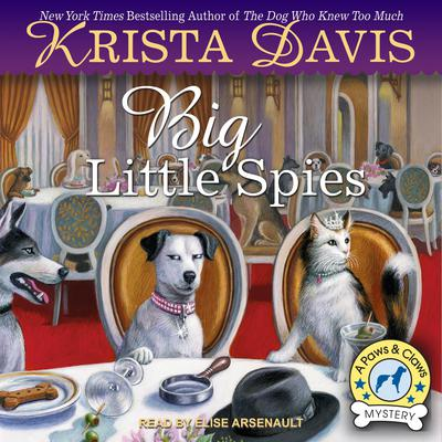 Big Little Spies Audiobook, by