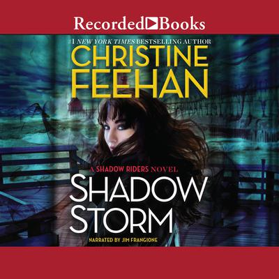 Shadow Storm Audiobook, by