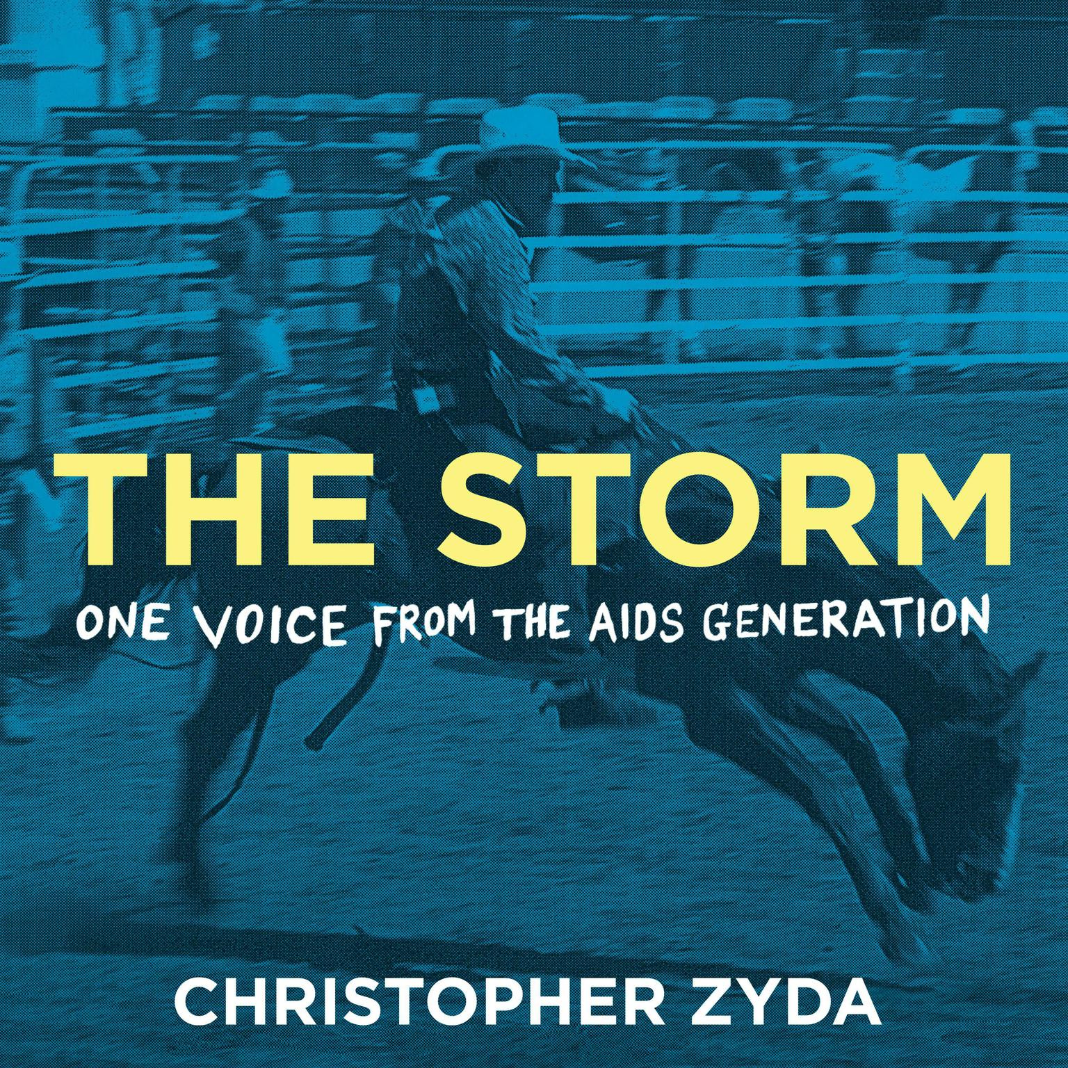 The Storm: One Voice from the AIDS Generation Audiobook, by Christopher Zyda