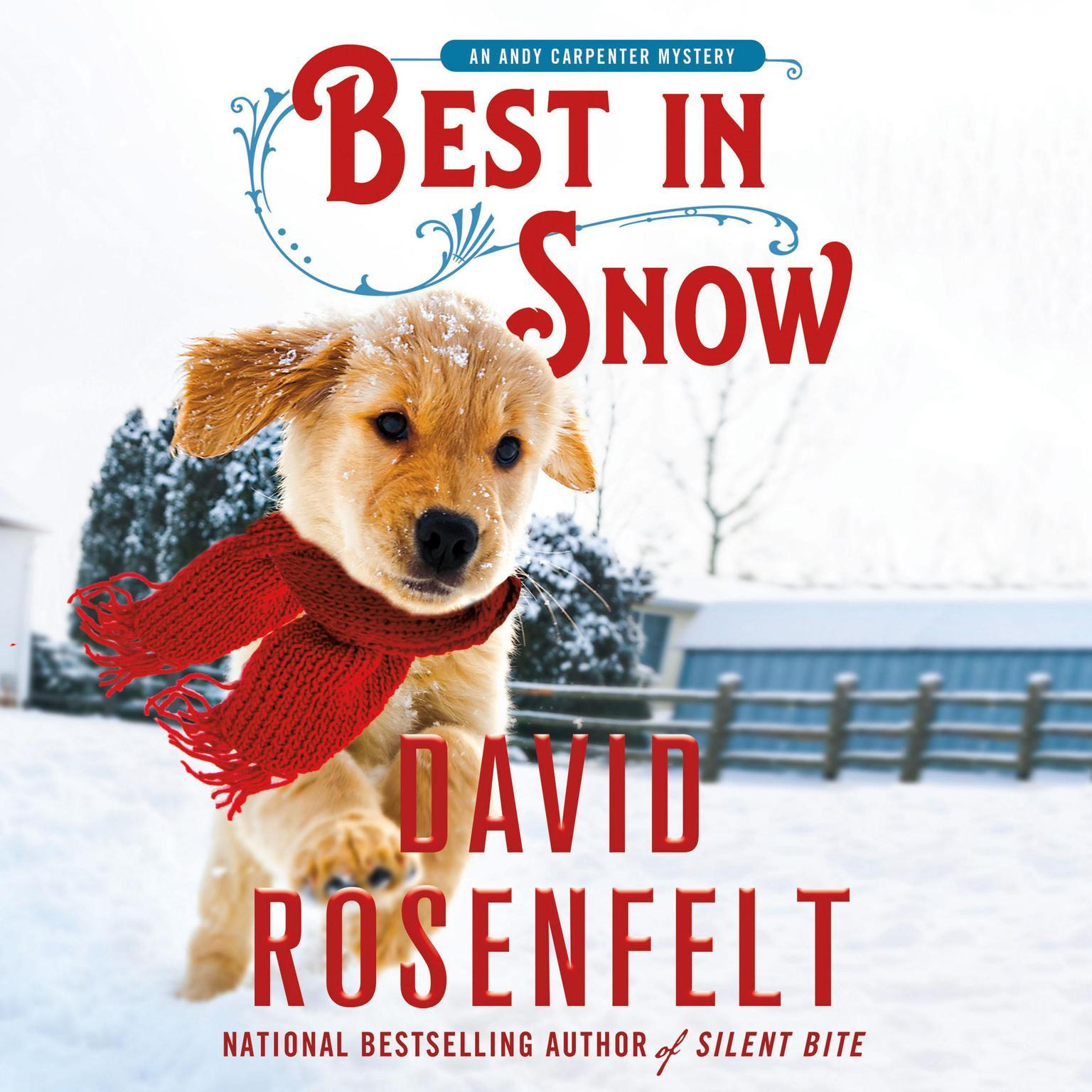 Best in Snow Audiobook, by David Rosenfelt