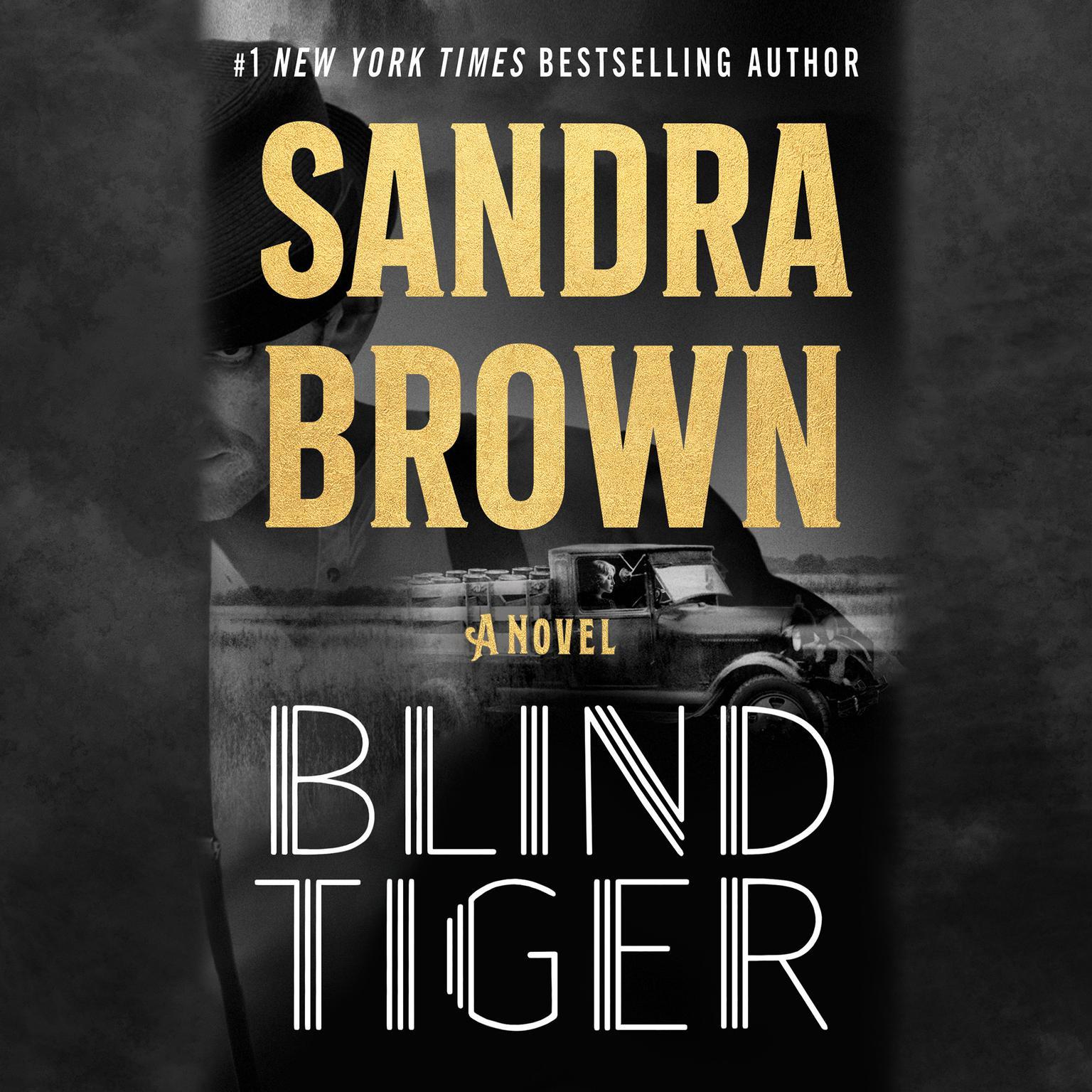 Blind Tiger: A Novel Audiobook, by Sandra Brown