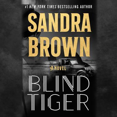 Blind Tiger: A Novel Audiobook, by