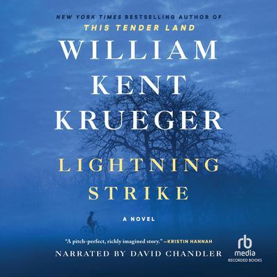 Lightning Strike: A Novel Audiobook, by