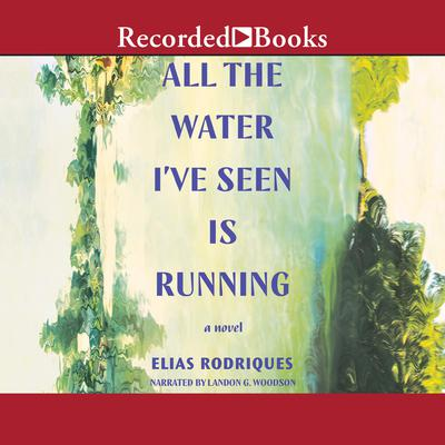 All the Water I've Seen is Running: A Novel  Audiobook, by Elias Rodriques