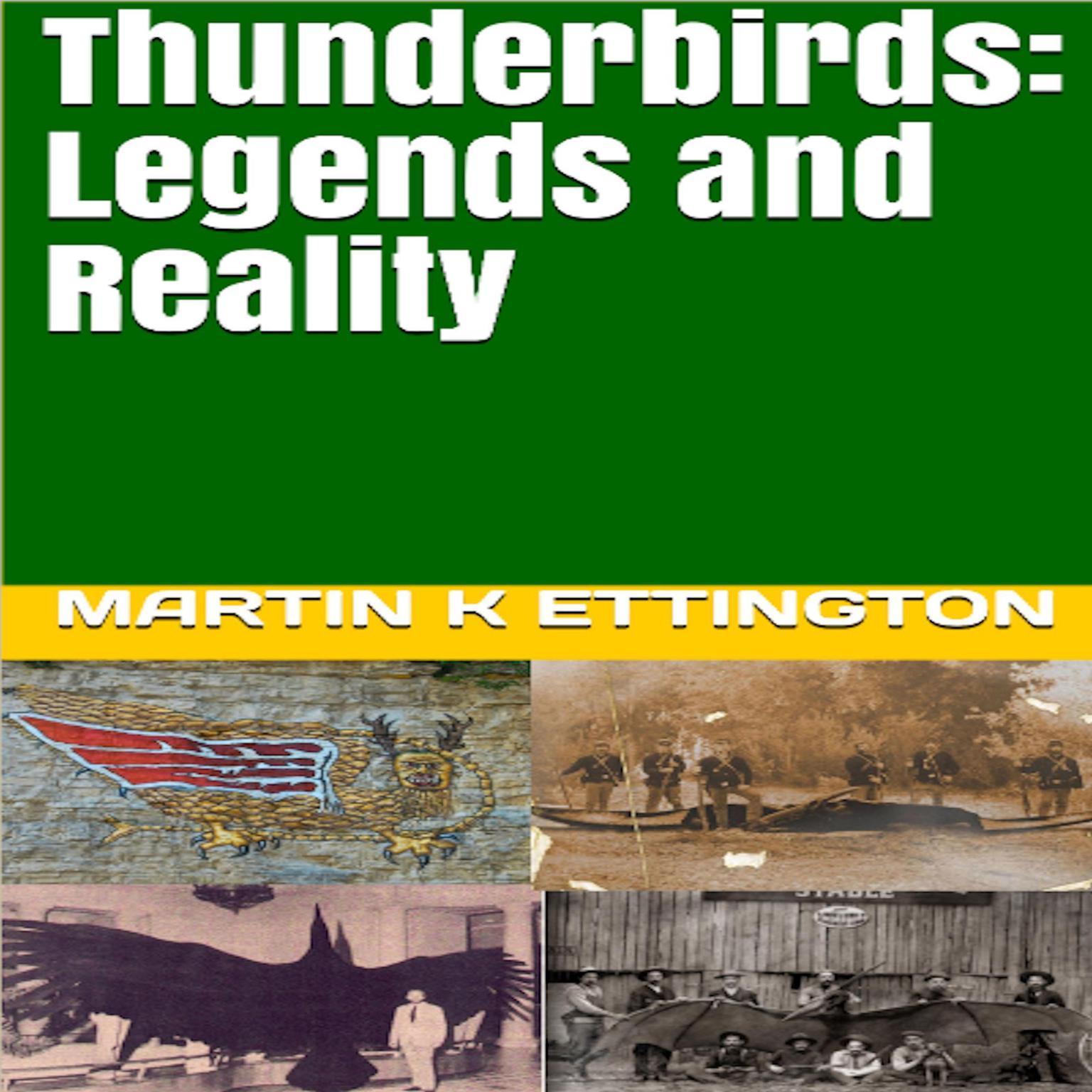 Thunderbirds: Legends and Reality Audiobook, by Martin K. Ettington