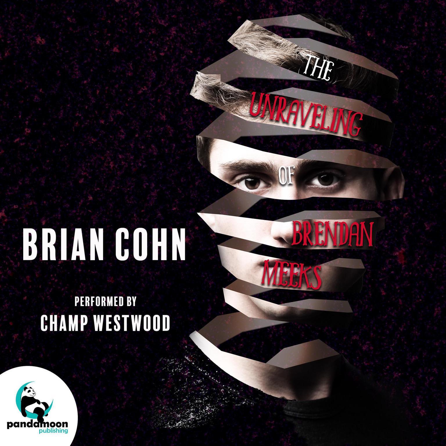The Unraveling of Brendan Meeks Audiobook, by Brian Cohn