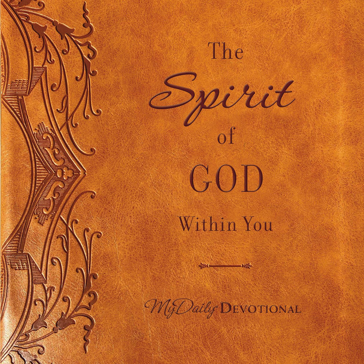 The Spirit of God Within You Audiobook, by Thomas Nelson