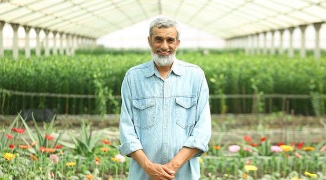 أساسيات و مهارات الزراعة المنزلية