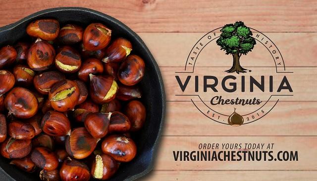 Virginia Chestnuts