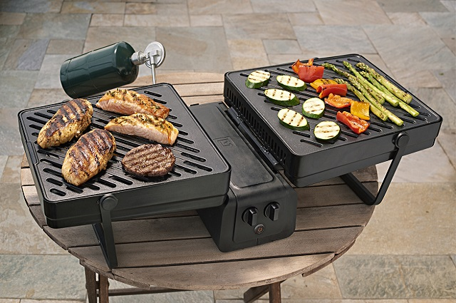 Point Elevate Portable Gas Grill