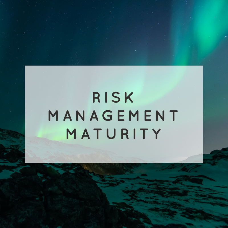 Risk Management Maturity