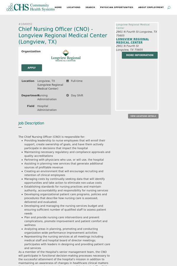 job description the chief nursing officer