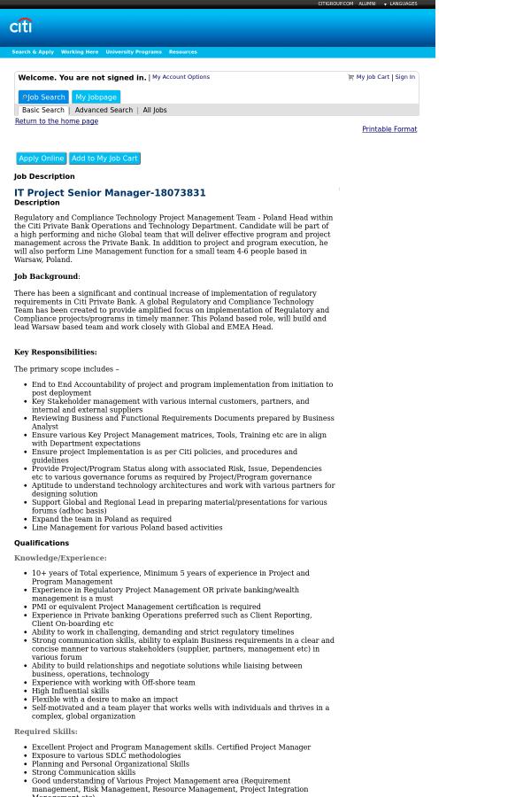it project manager job description