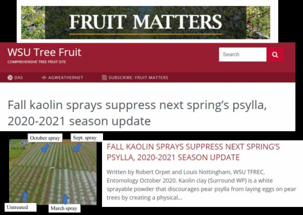 fruit matters newsletter heading