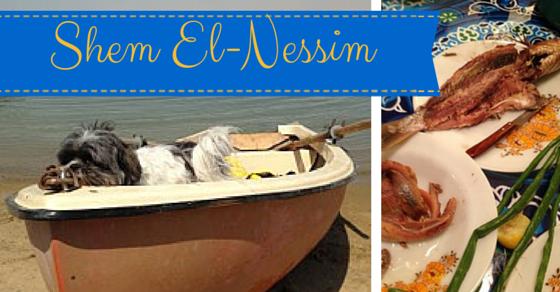 Shem El-Nessim