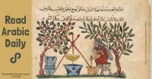 Read Arabic daily