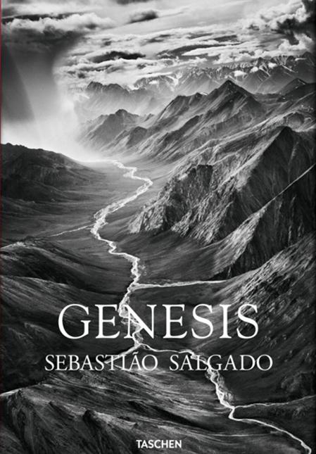 1. cover_fo_salgado_genesis_trade_gb_1307081418_id_618549