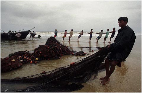Pulling a net, Goa, India