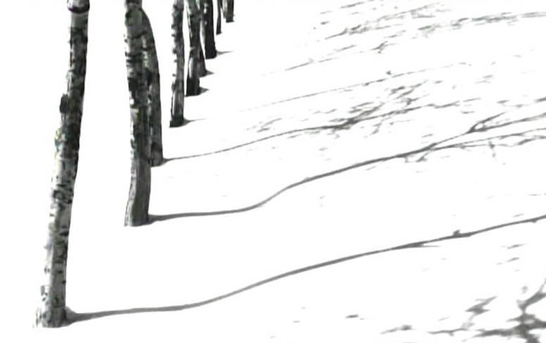 The Roads of Kiarostami