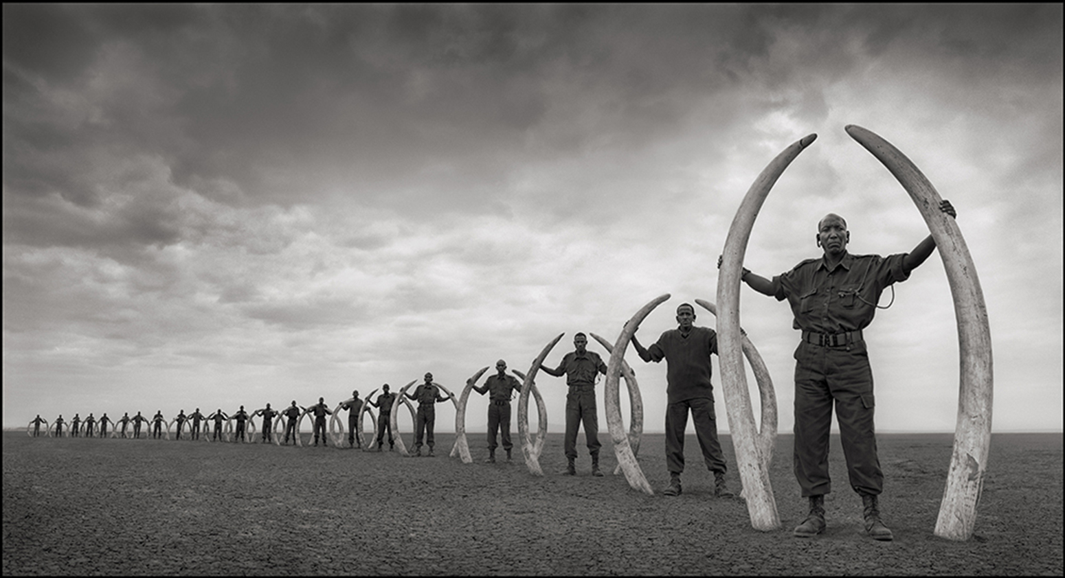 Rangers with Tusks of Killed Elephants by Nick Brandt