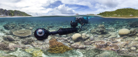 Underwater Production for Chasing Coral