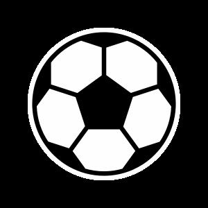 Fantasy Premier League – The Athletic