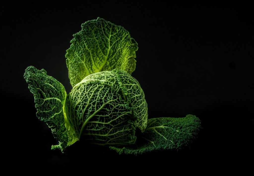 Cabbage on the keto diet