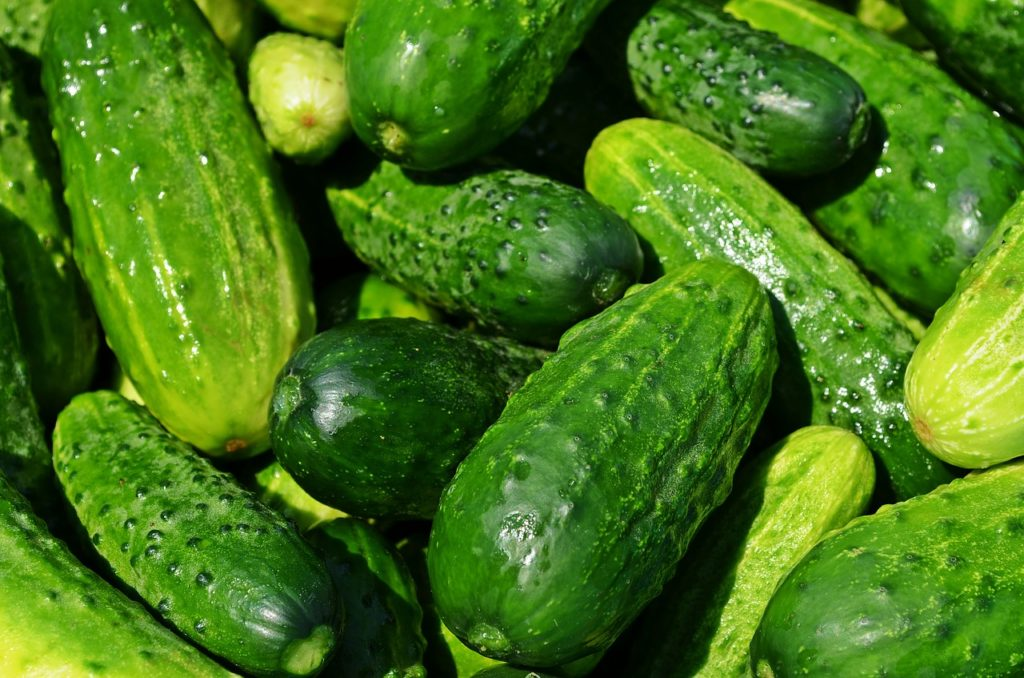 Cucumbers on the ketogenic diet.