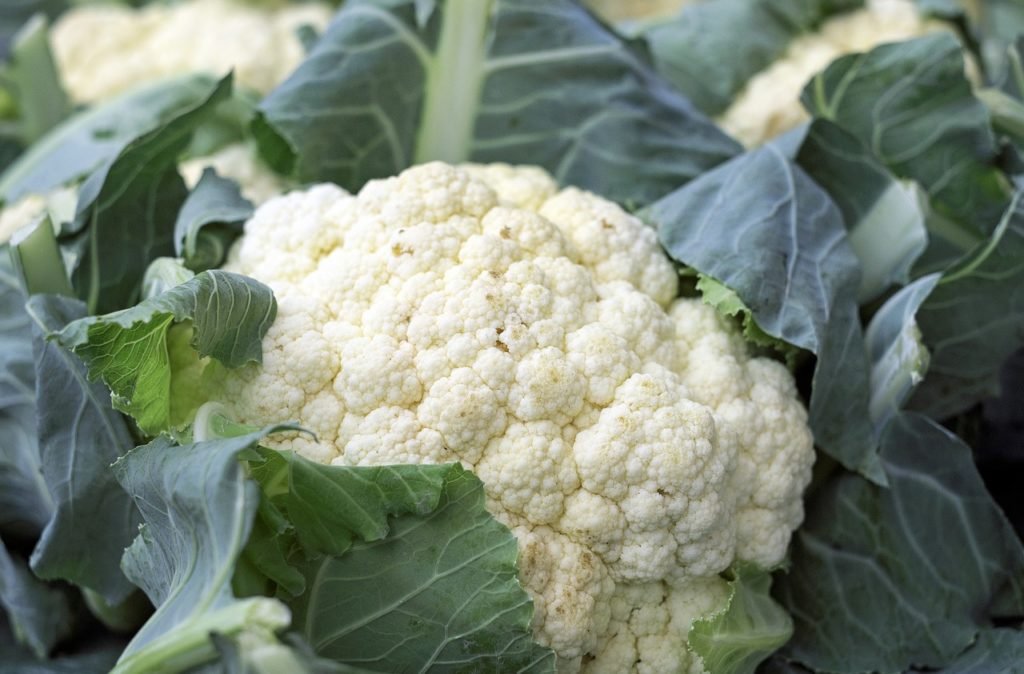 Cauliflower on the ketogenic diet.