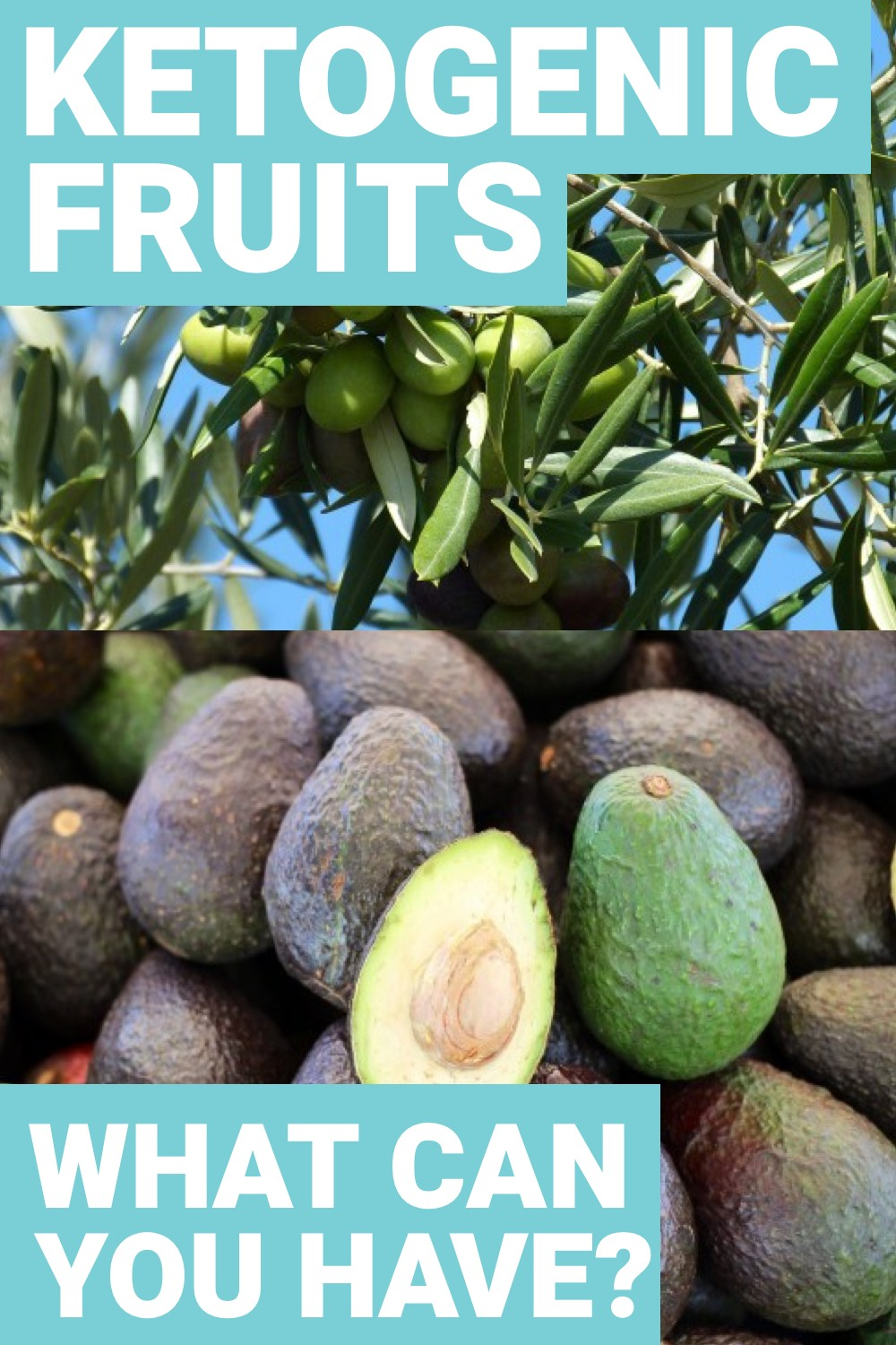 If you're doing keto and love fruits then you'll want to know what fruits you can eat on the ketogenic diet. Here are some of the fruits you can keep around.