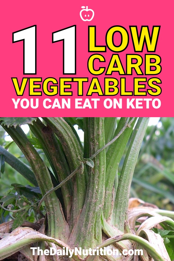 Low Carb Vegetables: The Best Ones to Eat and Which to Avoid
