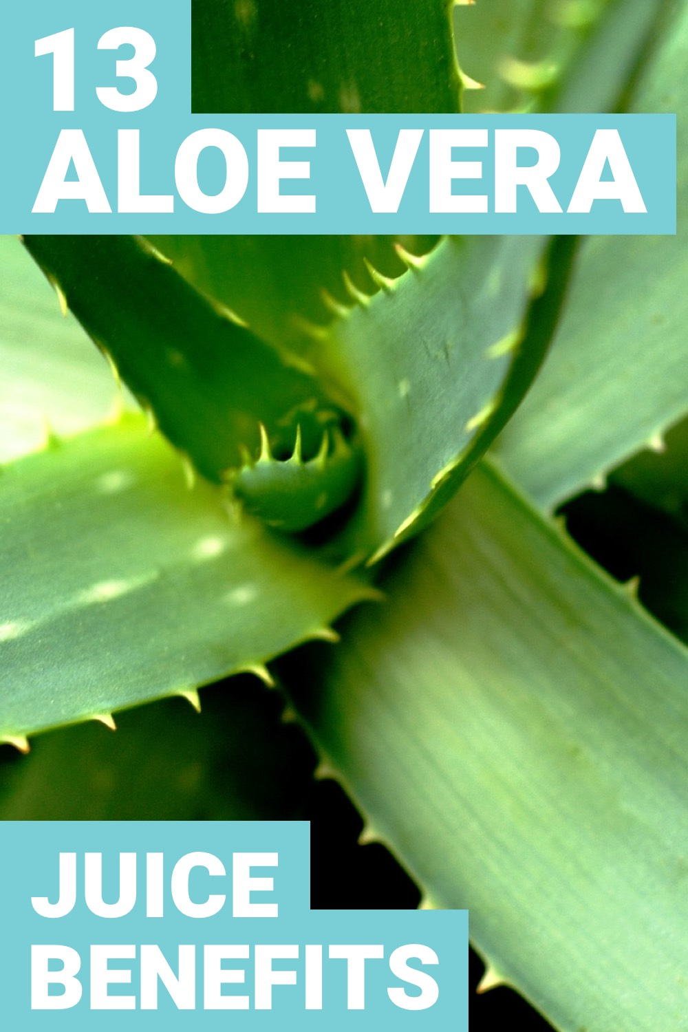 Is aloe vera juice good for you? You might be wondering this. Here are 13 benefits of aloe vera juice that'll greatly improve your health.