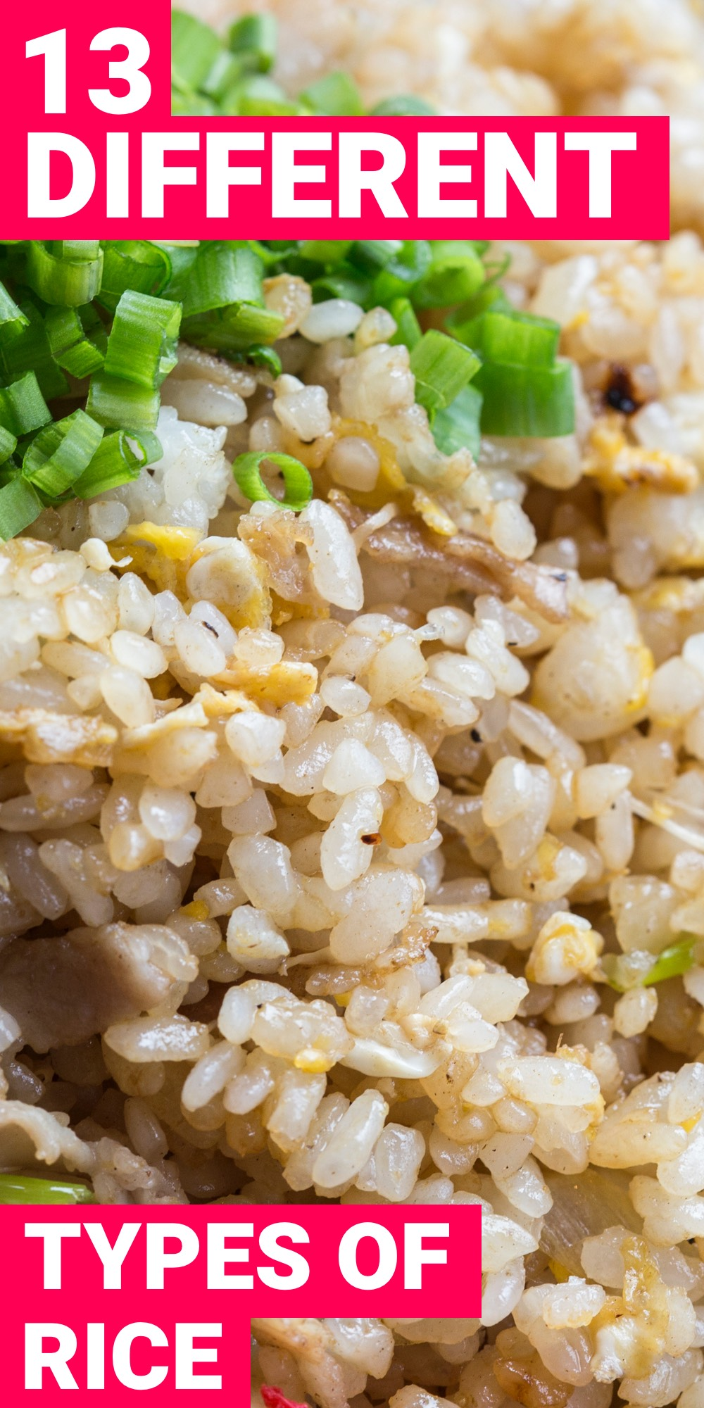 If you looking for different types of rice, you've come to the right place. Here are 13 different types of rice that you should know about.